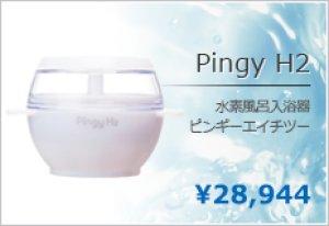 画像1: 水素風呂 ピンギーH2